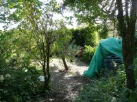 Before - Country Garden nr Hatfield
