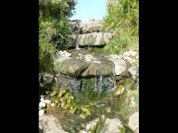 Water Feature - Large Country Garden in Penn, Bucks