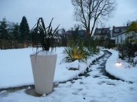 Winter Scene - Large Recreational Garden, St. Albans