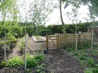 Country Garden nr Hatfield - Vegetable Patch
