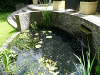 Pond with Water Feature - Recreational Garden - Chigwell