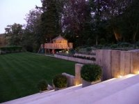 Garden Design Radlett - View from Terrace