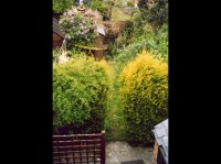 BEFORE Landscaping - Garden, St. Albans